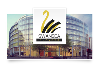 SWANSEA SURVEYS